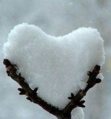 """Résultat de recherche d'images pour """"coeur serré"""""""